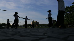 Senior Chinese people playing Taiji in park,Taipei Stock Footage