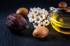 Argan oil and fruits Stock Photos