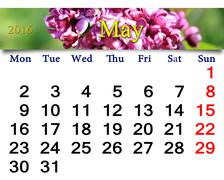Calendar for May of 2016 with lilac Stock Illustration