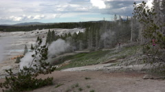 Norris Geyser Basin Yellowstone forest steam tourism 4K Stock Footage