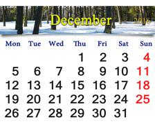 Calendar for December 2016 with picture of winter forest Stock Illustration