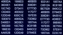 Hexadecimal code on computer screen, 4k, UHD Stock Footage