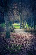Wooden bridge in autumnal park Stock Photos