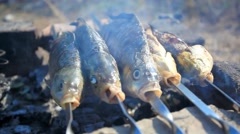 Process of fish preparation. Fish grilling on a barbecue in outdoor Stock Footage