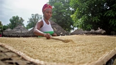 Food, Africa village woman sorting rice with wooden stick in profile Stock Footage