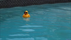 Large rubber duck in pool. - stock footage