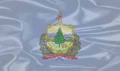 Vermont Silk Flag Stock Illustration