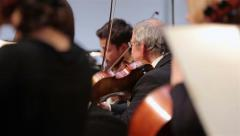 Group of violinists in a Symphony orchestra. Stock Footage