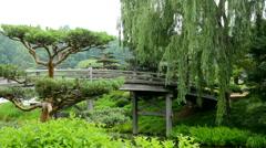Bridge over river to Japanese Garden - stock footage