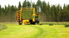 Yellow tractor transports bales of hay Stock Footage