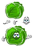 Green cabbage cartoon character with thumb up - stock illustration