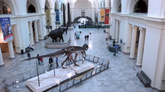Entrance lobby of the Field Museum Chicago Illinois 4k Stock Footage