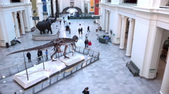 Main foyer of the Field Museum in Chicago Illinois 4k Stock Footage