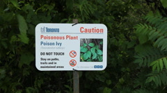 Poison Ivy sign in Toronto, Canada. Stock Footage