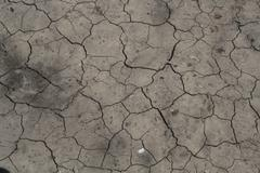 drought in the soil - stock photo