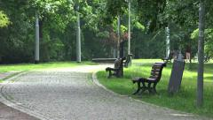 Park (forest) - pathway with benches - people walking in background - summer Stock Footage