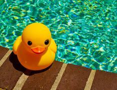 A rubber ducky Stock Photos
