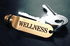 Wellness written on Golden Keyring - stock illustration