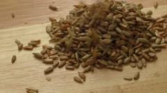 Roasted salted sunflower seeds Stock Footage