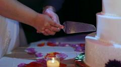 Bride and Groom Cut Wedding Cake Stock Footage