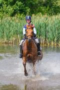 Horserider in the lake Stock Photos