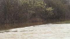 Flood - stock footage