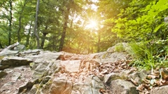 Flowing River with backlite sun lensflare Stock Footage