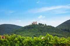 Stock Photo of Hambach Castle