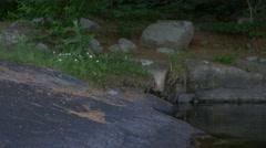 Rocks touching water Stock Footage