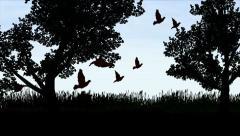 Birds in flight silhouette 1 Stock Footage