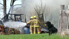 4K UHD - Dog watching firemen putting out a fire on sunny day Stock Footage