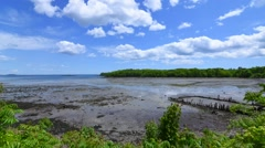 Time lapse low tide in bay and clouds - stock footage