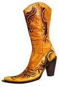 Stock Photo of Ladies boots