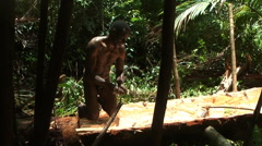 Tribesman papuan makes crushed core wood from sago tree, Papua Stock Footage