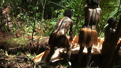 Tribe women collect wood shavings from tree core. Papua tribes Stock Footage