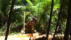 Woman from Dani tribe knocks out core of the tree. Western New Guinea Stock Footage