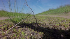 Country road in summer Stock Footage