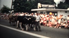1959 - Dairy Queen Cows Parade East Haven, Connecticut. USA. Stock Footage