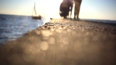 Vacation, travel and sea concept. People came to the shore and sail boat at Stock Footage