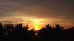 Florida Oceanside Sunset With Palm Trees And Clouds In The Sky Stock Footage