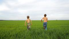 Two happy boys running in the field in summer day Stock Footage