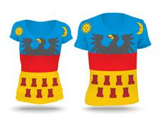 Flag shirt design of Transylvania - stock illustration