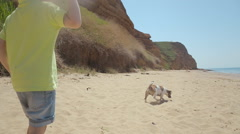 The little blond boy throws a stone to his dog Jack Russell near the sea Stock Footage