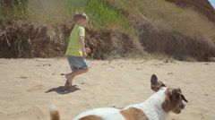The little blond boy running on the sand near the sea with his dog Jack Russell Stock Footage