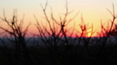 Silhouette in the sunset Stock Footage