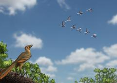 An Archaeopteryx observing a flock of migrating pterosaurs. Stock Illustration