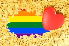 Rainbow Red heart and the LGBT gay pride flag Stock Illustration