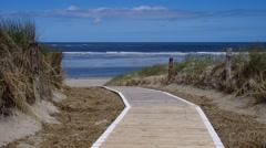 Island Langeoog, dune and track Stock Footage