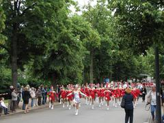 Podebrady, Czech Republic: 20. 6. 2015: Team of majorettes in the marching pa - stock photo