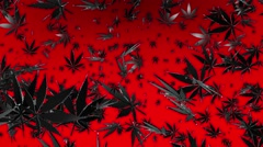 Flying cannabis leaves on red Stock Footage